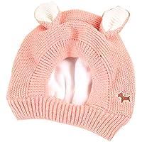 Sombrero de lana de cachorro de dibujos animados para niños Otoño e invierno, además de terciopelo grueso Sombrero de lana cálida Sombrero de invierno de punto Adecuado para actividades al aire libre