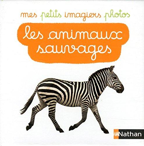 Les animaux sauvages : 40 cartes photos par Nathan