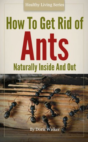 How To Get Rid Of Ants (English