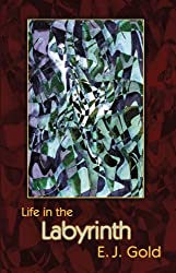 Life in the Labyrinth (Labyrinth Trilogy, Book 2)