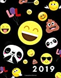 2019: Cute Emoticon Fun Week To View Daily Diary and Planner For Scheduling, Monthly Agenda and Goals For The Year