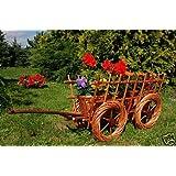 Deko-Shop-Hannusch Charrette décorative en rotin avec jardinière intégrée