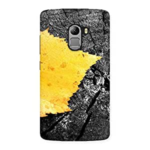 Special Leaf Lone Back Case Cover for Lenovo K4 Note