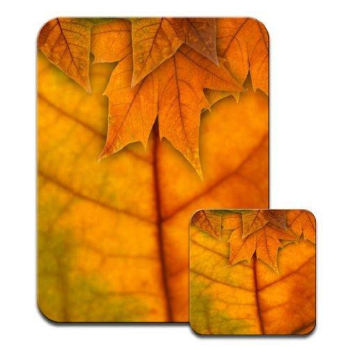 Stunning Close Up of Golden Fallen Autumn Leaves &Premium Mauspad Und Untersetzer Autumn Leaves Teller
