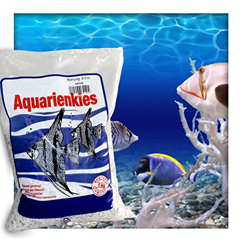 Kieskönig Aquarienkies Aquariumsand Bodengrund 1-2 mm Aquariensand hochrein Naturweiss 15 kg (3 x 5 kg Sack)