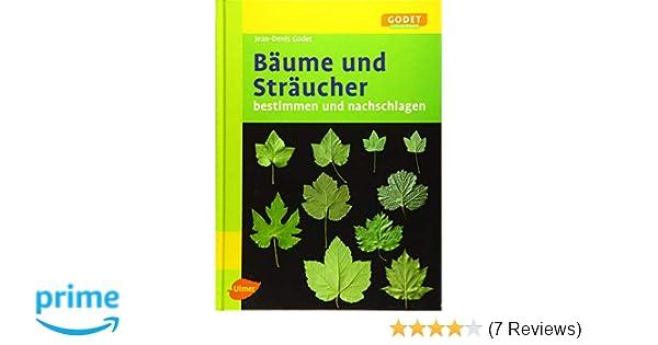 Super Bäume und Sträucher: Bestimmen und Nachschlagen GODET Naturführer #OG_62