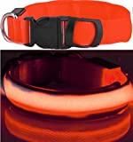 LEUCHTENDES Hunde-Halsband, Größe: L (45-52cm / 2,5cm breit), Farbe: ROT, mit Klickverschluß. LED's leuchten und blinken im Dunkeln.