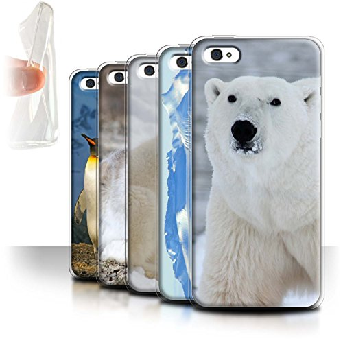 Stuff4 Gel TPU Hülle / Case für Apple iPhone 5C / Weiß Arktis Hase Muster / Arktis Tiere Kollektion Pack 6pcs