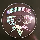 Syer Barz - Mushrooms EP - Lit City Trax - LCTRAX015