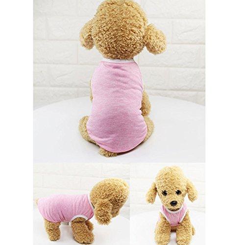 PanDaDa Haustier Hund Katze Weste Frühling Sommer Cool Pet Sleeveless T-Shirt für Kleine und Mittlere Hunde -