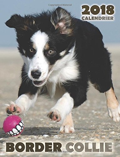 Border collie 2018 calendrier (Edition France) por Over the Wall Dogs