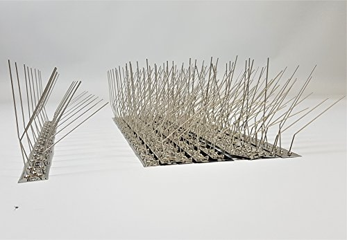 5 Meter (10 St.) Schwalbenabwehr Schwalbenabwehrspikes Taubenabwehr komplett aus Edelstahl, 50 cm lang