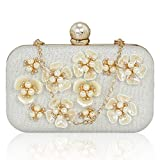 Kleio Designer Floral Embellished Party / Wedding Box Clutch with Sling For Women / Girls (Silver) (BNB571WZ-AG) Amazon