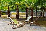 10 Semi freschi - Palma di canapa - Trachycarpus Fortunei - Palmo decorativo resistente