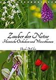 Zauber der Natur - Heimische Orchideen und Wiesenblumen (Tischkalender 2019 DIN A5 hoch): Wildwachsende Orchideen auf selten gewordenen Wildwiesen (Monatskalender, 14 Seiten ) (CALVENDO Natur)