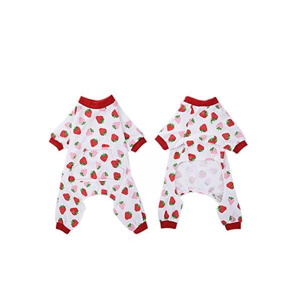 WIDEN Pet Dog Pajamas Jumpsuits Puppy Clothes Cotton Cute - Dogs.co.uk bcefa3564