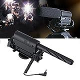 LESHP Mikrofon mit Stereo für Nikon/Canon Camcorder