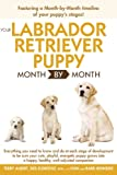 Your Labrador Retriever Puppy Month By Month: Everything You Need to Know at Each Stage of Development (Your Puppy Month by Month)