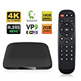 Google TV Box Topsion Android 6.0 Marshmallow Amlogic S905X Quad Core ARM Cortex A53 Streaming Media Player RAM 2GB/ROM 16GB with Bluetooth and Remote Controller Support 4K 3D Movies 1080P