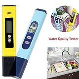 Saingace PH-mètre numérique,Professionnel Testeurs de qualité d'eau 0,01 PH avec Plage de Mesure du pH 0-14, TDS PH EC Set 2 en 1 0-9990 PPM pour Eau Potable à Usage Domestique, Piscine(2PC)