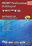 Software - PROMT Professional 12 Multilingual: Textübersetzer - Inklusive 33 Fachwörterbücher