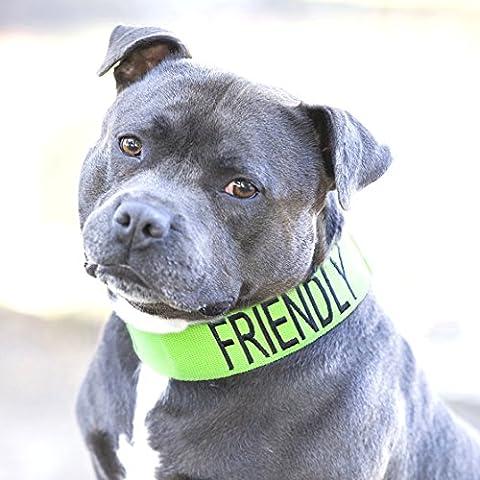 AMICAL Vert Couleur Coded Nylon large col L XXL semi-Choke Dog (connu comme Friendly) prévient les accidents en avertissant les autres de votre chien à l