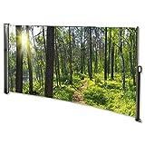 MACOShopde by MACO Möbel Seitenmarkise mit Foto Wald Links- Windschutz/Sichtschutz / Seitenrollo 160 x 300 cm