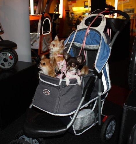 """InnoPet """"First Class"""" Hundebuggy Jogger Buggy Hundetasche Hundewagen Pet Stroller blau grau - 2"""