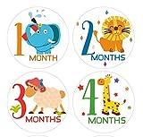 #9: Fusion Baby Milestone Stickers - Multicolor 006