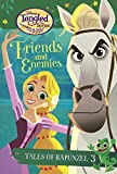Tales of Rapunzel #3: Friends and Enemies (Disney Tangled the Series) (Stepping Stone Book(tm))