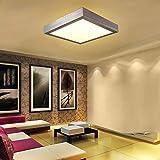 16W LED Warmweiß Modern Deckenlampe Deckenleuchte Schlafzimmer Küche Flur Wohnzimmer Lampe Wandleuchte Energie Sparen Licht Silber Vergleich