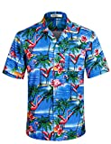 APTRO Herren Hemd Strandhemd Hawaiihemd Kurzarm Urlaub Hemd Freizeit Reise Hemd Party Hemd Kranich BT005 XXXL
