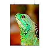 Caméléon Photo Animal Déguisement Matte/Glacé Affiche A1 (84cm x 60cm) | Wellcoda
