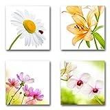 Blumen Blüten - Set C schwebend, 4-teiliges Bilder-Set je Teil 29x29cm, Seidenmatte moderne Optik auf Forex, UV-stabil, wasserfest, Kunstdruck für Büro, Wohnzimmer, XXL Deko Bild