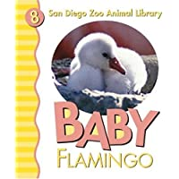 Baby Chimpanzee: My First Animal Library (San Diego Zoo Animal Library) by Patricia A. Pingry