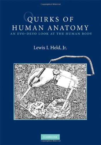 Quirks of Human Anatomy: An Evo-Devo Look at the Human Body (English Edition)