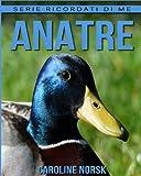 Anatre