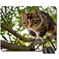 Nizza gatto mouse pad, Mousepad (Gatti Mouse Pad) #014 - Nizza Mouse Pad