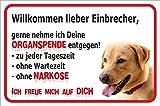 Schild - Vorsicht Labrador Retriever