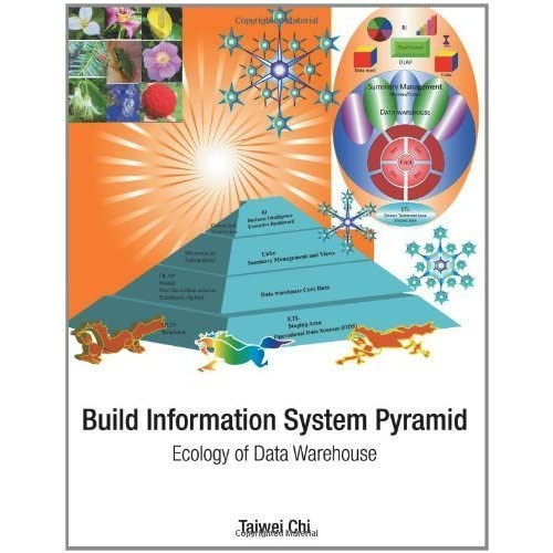 Build Information System Pyramid: Ecology of Data Warehouse by Chi, Taiwei (2012) Paperback