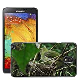 Hello-mobile Hot Style-Custodia rigida per cellulare, a forma di nido d'uccelli, M00138000 Nature-Nido per uccelli, a forma di uccellino, per Samsung Galaxy Note 3 III N9000/N9002/N9005