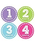 Months in Motion 376 Monthly Baby Girl Stickers Milestone Age Sticker Photo Prop