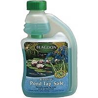 Interpet 2650 Blagdon bioattivo Biocondizionatore rende pesci