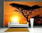 Vlies Fototapete - Akazienbaum im Sonnenuntergang, Tanzania Serengeti Afrika - 230x150 cm - inklusive Kleister - Tapetenkleister – Bild auf Tapete – Bildtapete – Foto auf Tapeten – Wand – Wandtapete – Vliestapete – Wanddeko - Design