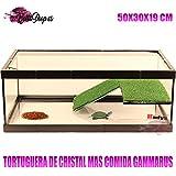 TORTUGUERA CRISTAL PARA TORTUGAS ACUARIO GRANDE TORTUGAS + COMIDA