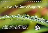 ... nach dem Regen ... die Natur erstrahlt in glitzernder Schönheit (Tischkalender 2019 DIN A5 quer): Regentropfen auf Blüten und Blättern - glitzernd ... 14 Seiten ) (CALVENDO Natur)