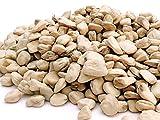 seme semi di cicerchia legumi da semina confezione da 250 grammi in pak semi selezionati
