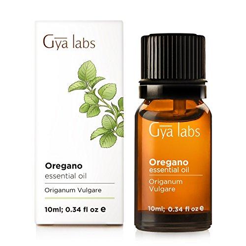 Oregano ätherisches Öl - 100% rein therapeutische Qualität für Aromatherapie-Diffuser - 10 ml - Gya Labs -