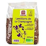 Lentillons de la Champagne Bio 500g