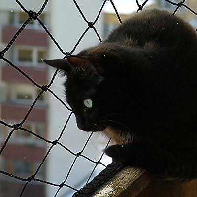 casa pura® Katzennetz | mit Befestigungsseil | Katzenschutz für Balkon, Terrasse, Fenster und Tür | reißfest, aus hochfestem Nylon | 2,5 x 6 m von Casa Pura - Gartenmöbel von Du und Dein Garten